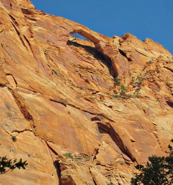 Terrain pour l Vente à 251 Acres w/ SUBDIVISION 251 Acres w/ SUBDIVISION Apple Valley, Utah 84737 États-Unis