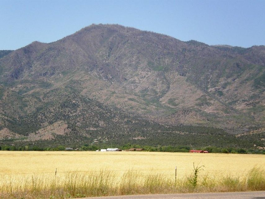 Additional photo for property listing at 39 Acres New Harmony 39 Acres New Harmony New Harmony, Utah 84757 United States
