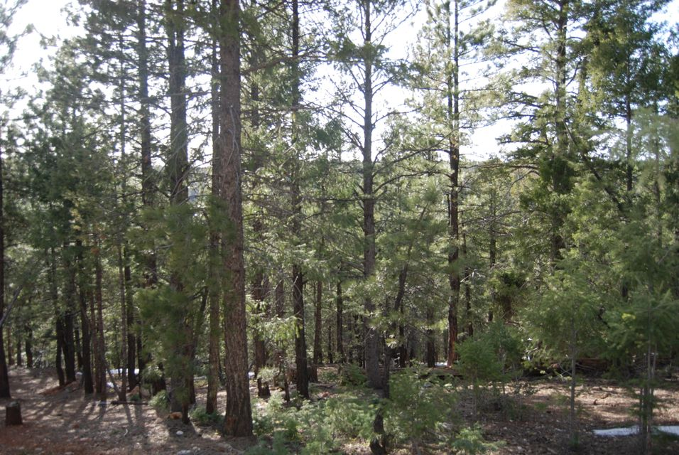 Additional photo for property listing at 1285 Ponderosa Drive 1285 Ponderosa Drive Duck Creek Village, 犹他州 84762 美国