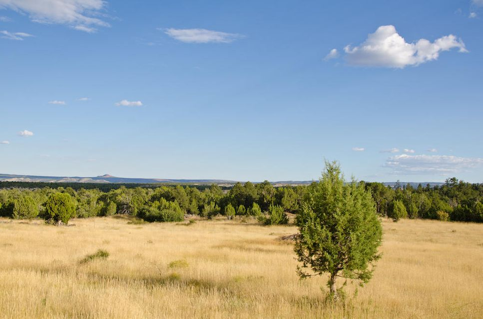 Additional photo for property listing at BUFFALO RIDGE Road BUFFALO RIDGE Road Mount Carmel, Utah 84755 United States