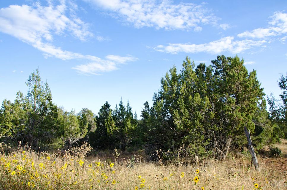 Additional photo for property listing at HALF MOON LOOP HALF MOON LOOP Mount Carmel, Utah 84755 United States