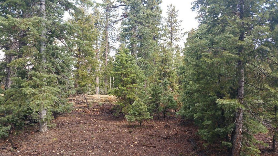 Additional photo for property listing at 1320 Duck Creek Ridge Road 1320 Duck Creek Ridge Road Duck Creek Village, Utah 84762 United States