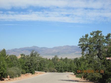 土地,用地 为 销售 在 436 Pinion Hills Drive 436 Pinion Hills Drive Dammeron Valley, 犹他州 84783 美国