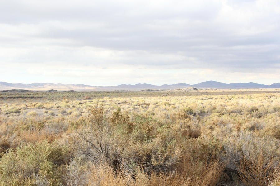 Additional photo for property listing at 92 Acres on Hwy 257 north of Milford 92 Acres on Hwy 257 north of Milford Milford, Utah 84751 Estados Unidos