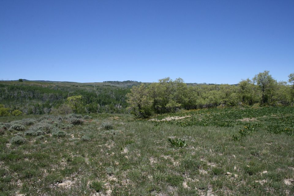 Additional photo for property listing at Miner's Peak Road Miner's Peak Road Cedar City, 犹他州 84720 美国
