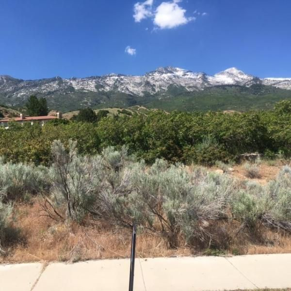 Additional photo for property listing at 487 East View Lane 487 East View Lane Alpine, Юта 84004 Соединенные Штаты