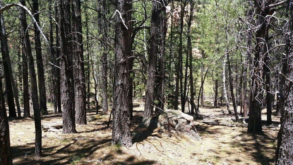 Additional photo for property listing at 106 Tommy Creek Rd.,-Parcel #1 106 Tommy Creek Rd.,-Parcel #1 Duck Creek Village, Utah 84762 États-Unis