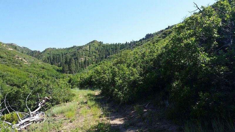 Additional photo for property listing at T39S R8W Millet Point Estates T39S R8W Millet Point Estates Duck Creek Village, Utah 84762 États-Unis