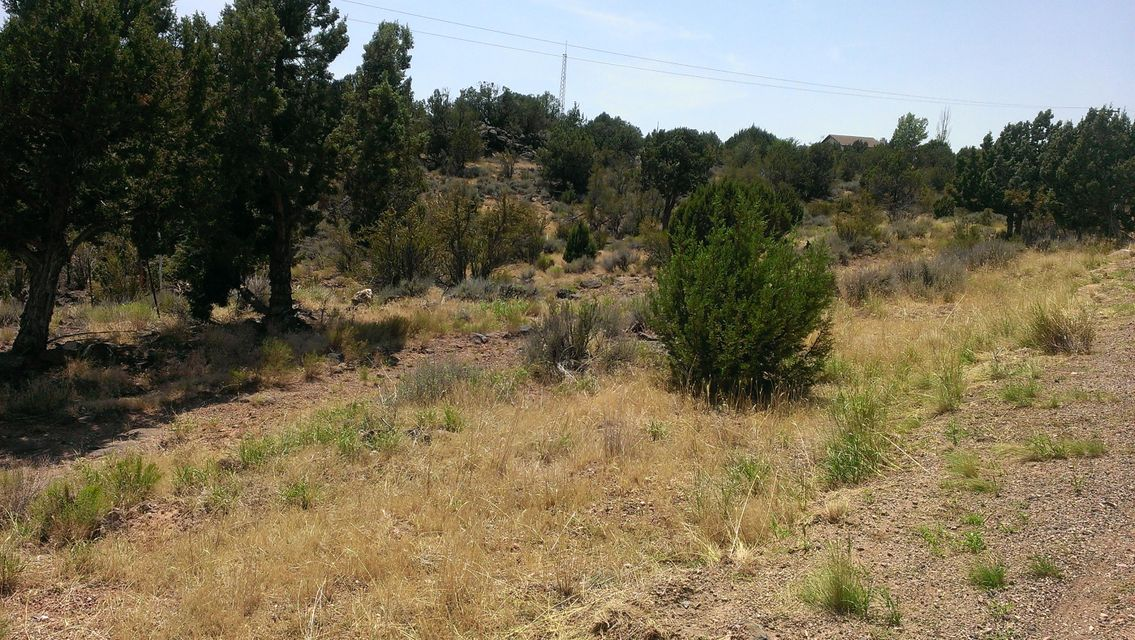Additional photo for property listing at SR18 Lucky 7 Road SR18 Lucky 7 Road Brookside, Utah 84782 États-Unis