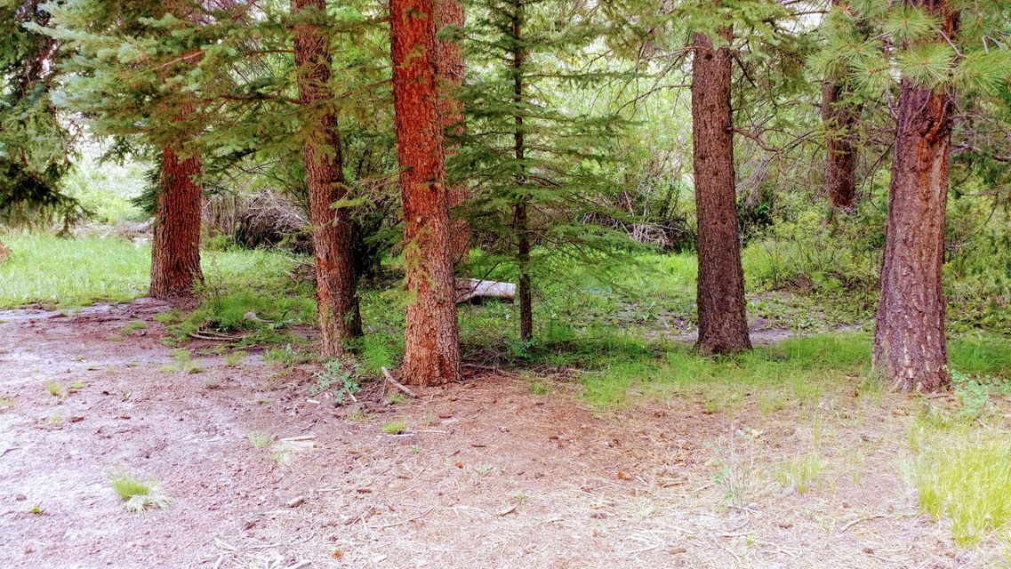 Land for Sale at 1000 Clear Creek Canyon Road 1000 Clear Creek Canyon Road Panguitch, Utah 84759 United States