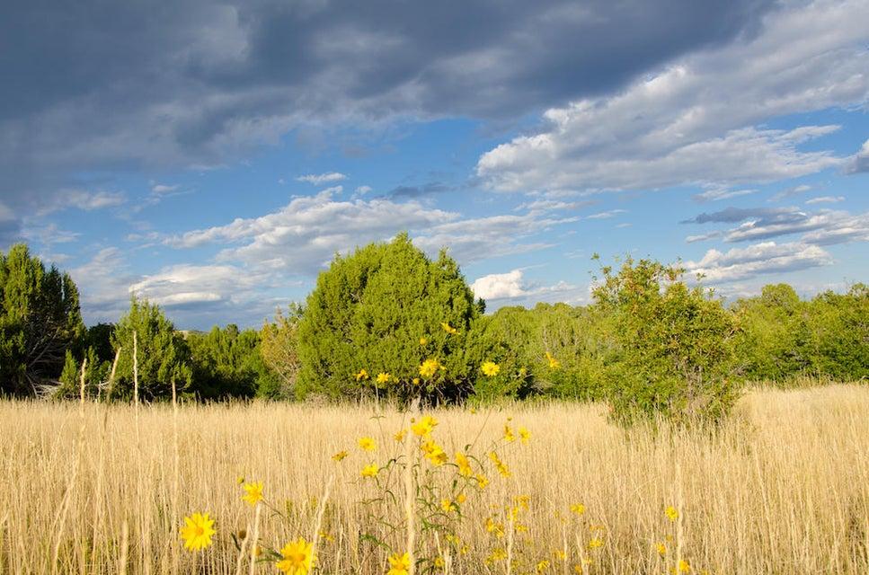 Additional photo for property listing at Buffalo Ridge Road Buffalo Ridge Road Mount Carmel, Юта 84755 Соединенные Штаты