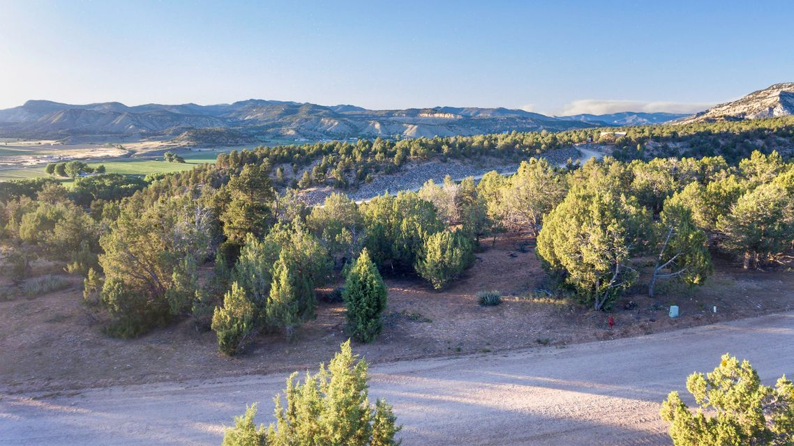 Additional photo for property listing at 4 Pinyon Pine Drive 4 Pinyon Pine Drive Orderville, Utah 84758 Estados Unidos