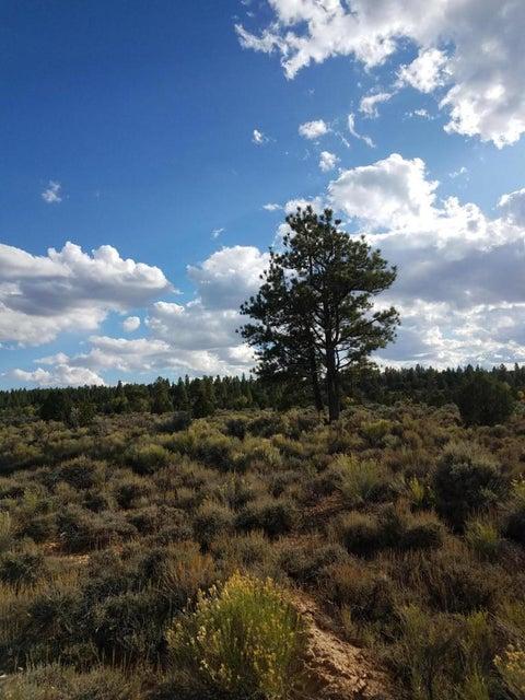 Land for Sale at 11.93 Ac Pine Lake Road 11.93 Ac Pine Lake Road Bryce, Utah 84764 United States
