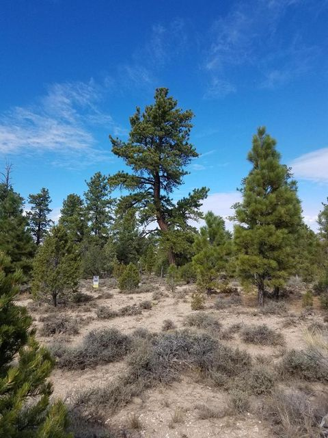 Additional photo for property listing at 10 Acres Pine Lake Road 10 Acres Pine Lake Road Bryce, 犹他州 84764 美国