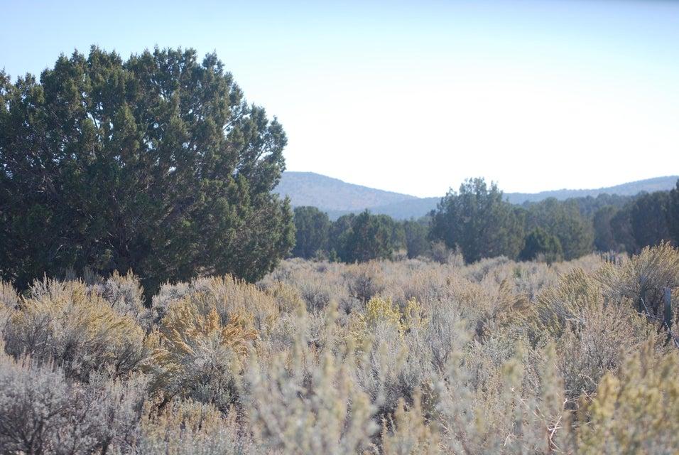 Terrain pour l Vente à 17.5 Acres Meadow Canyon Road 17.5 Acres Meadow Canyon Road Enterprise, Utah 84725 États-Unis