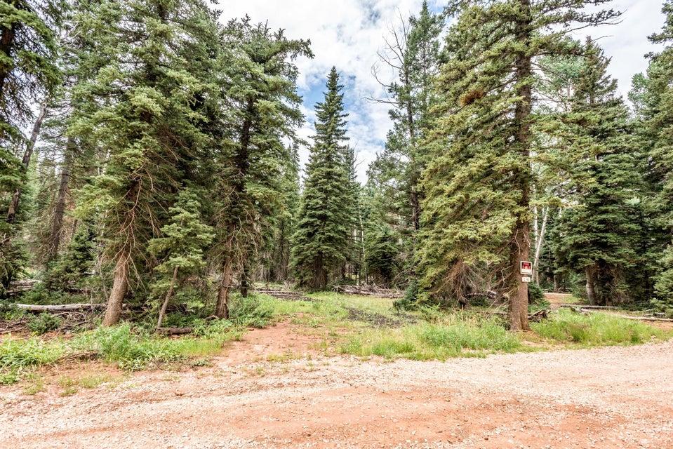 土地,用地 为 销售 在 815 Bear Track 815 Bear Track Duck Creek Village, 犹他州 84762 美国