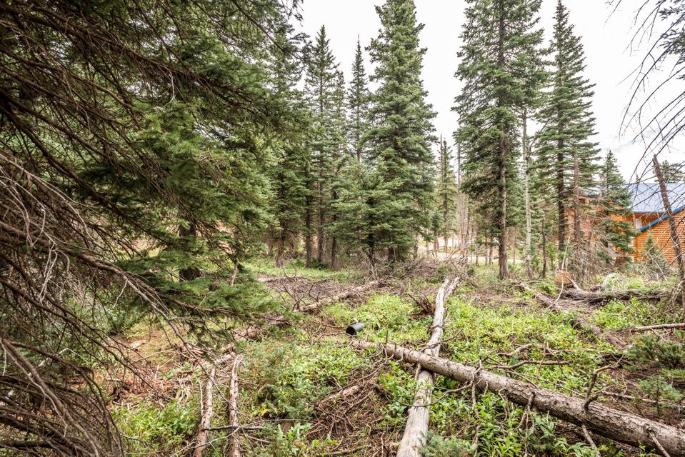Additional photo for property listing at 815 Bear Track 815 Bear Track Duck Creek Village, 犹他州 84762 美国