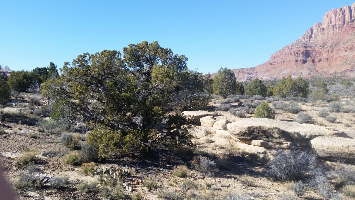 Nestled high on the rim canyon in Anasazi, 360 degree views of Mt. Kinesava, White Throne, enchanting views. Well planned community, a natural habitat of 300 acres & 80 homesites which gives each lot owner 3 to 4 acres of common area between each site.Located on small culdesac