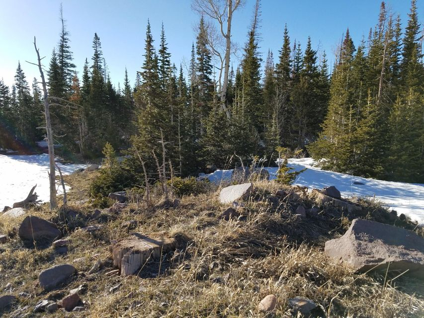Gorgeous pine covered lot with gradual slope to provide a more expansive view from this corner lot. Power & water at the site Larger lots provide unusually good spacing between cabins and location provides minimal traffic. Town roads are maintained and cleared in the winter in this subdivision.