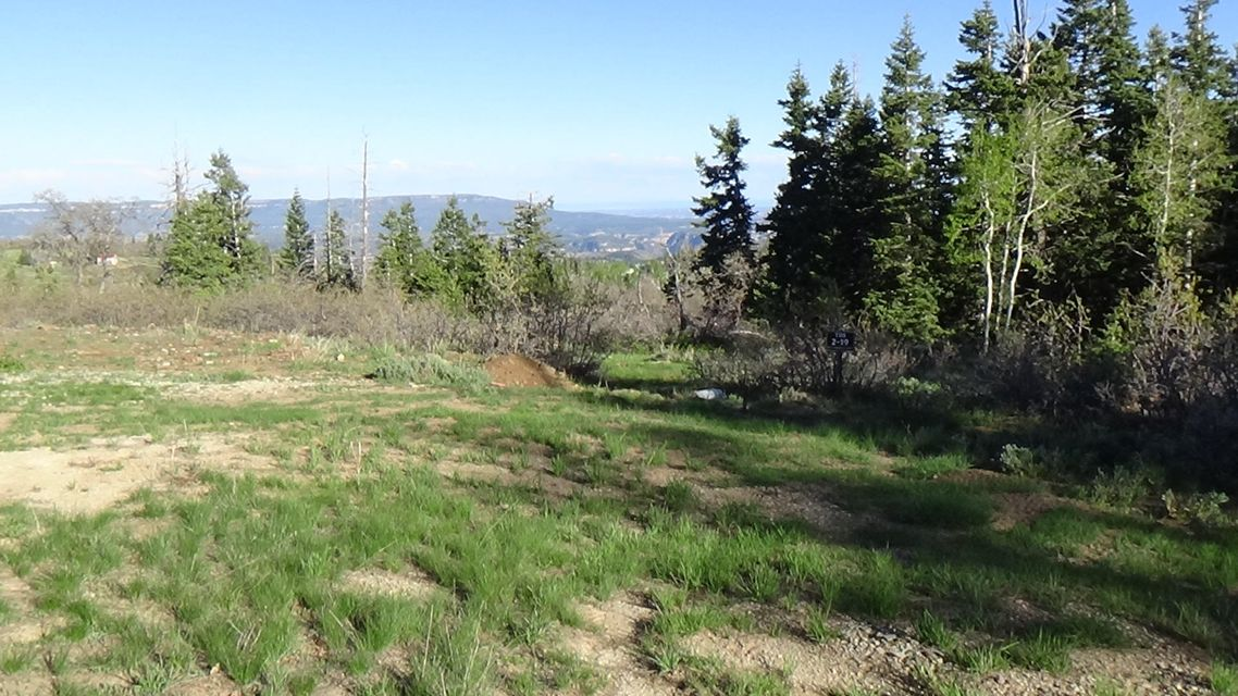 Kolob mountain recreational lot of 1.22 acres. Situated in a popular subdivision  with pines and an awesome view. Large open space acreage on two sides, allowing a view of upper Zion National Park. Ready for your cabin to be built. Includes a water connection and septic tank.
