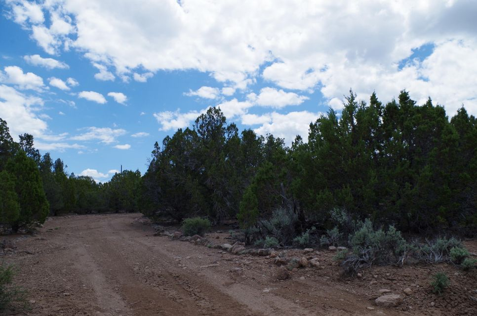 Live among the junipers & pinyons near Old Iron Town and adjacent lake.  This is a perfect getaway to camp or build a cabin.  Only about 20 miles from Cedar City. Power pole on lot with .45 acre feet of water right (#71-3560)