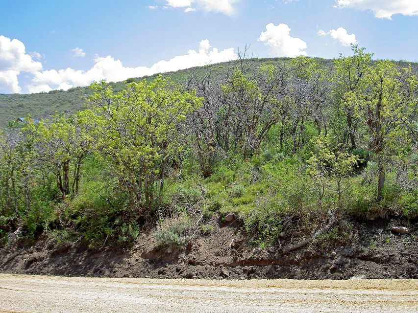 lot with scrub oak overlooking Heber City, Utah.  Water system, utilities and services.  Several homes in the area with full time residents. Owners have access to Uinta National Forest. Percolation test recently completed. (see documents).