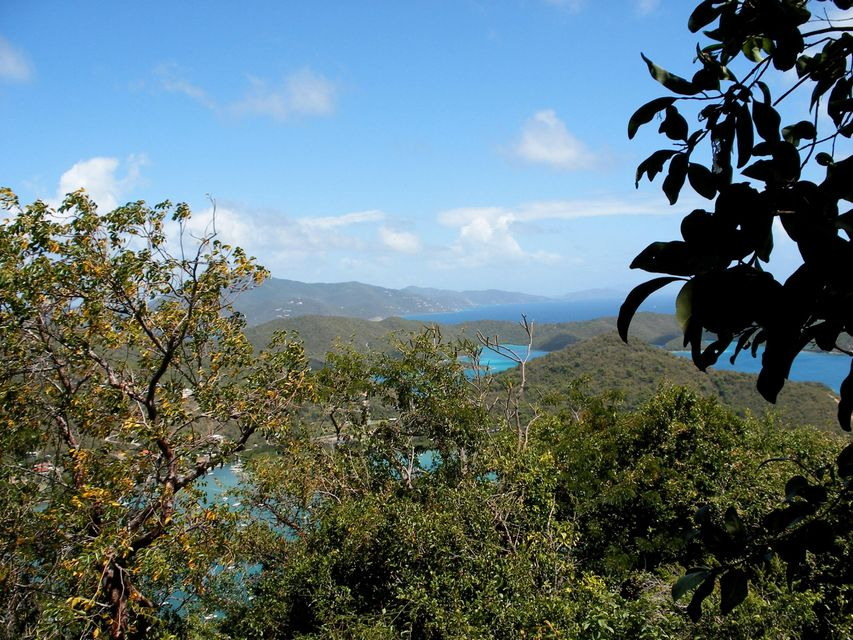 Additional photo for property listing at Carolina Carolina St John, Virgin Islands 00830 Виргинские Острова