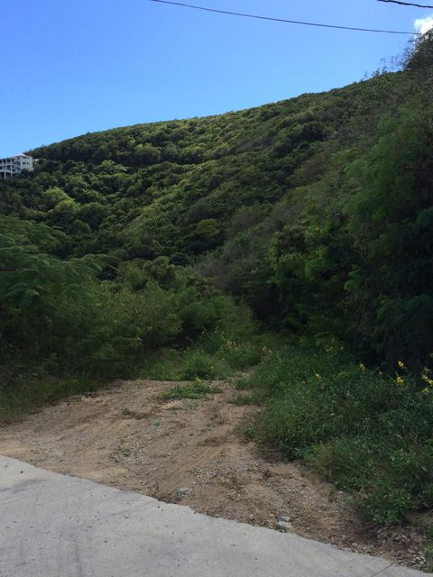 Additional photo for property listing at Calabash Boom Calabash Boom St John, Virgin Islands 00830 Isles Vierges Américaines