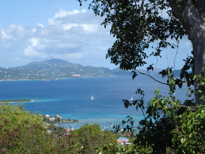 Land for Sale at Bethany St John, Virgin Islands 00830 United States Virgin Islands