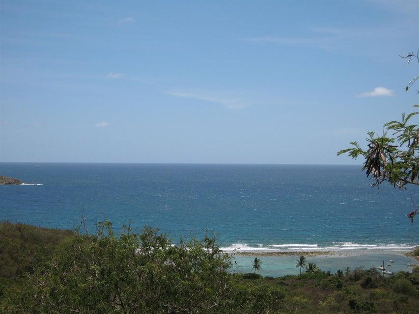 Terrain pour l Vente à John's Folly John's Folly St John, Virgin Islands 00830 Isles Vierges Américaines