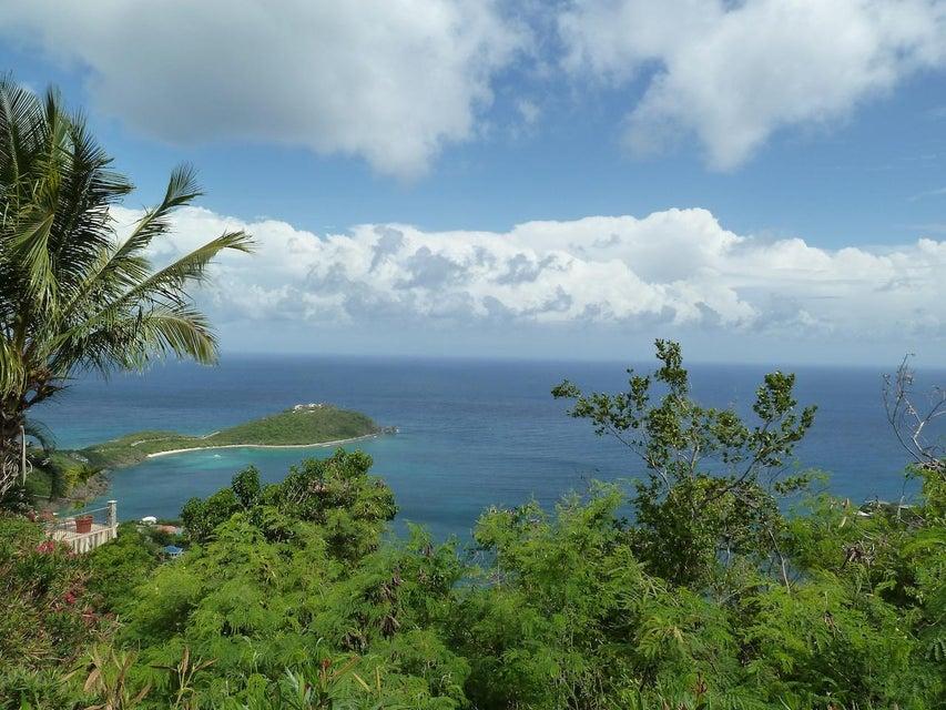 St John, Virgin Islands 00830, ,Land,For Sale,17-200