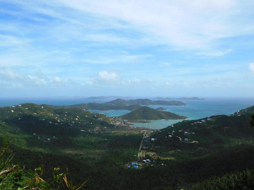 土地,用地 为 销售 在 Carolina Carolina 圣约翰, 维京群岛 00830 美属维尔京群岛