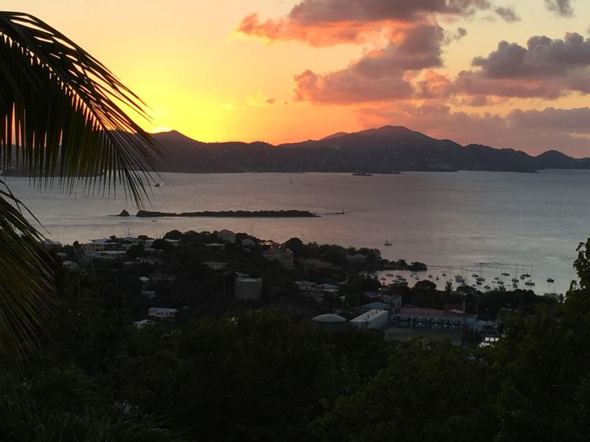 独户住宅 为 销售 在 Enighed Enighed 圣约翰, 维京群岛 00830 美属维尔京群岛