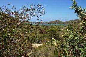 Terrain pour l Vente à Fish Bay Fish Bay St John, Virgin Islands 00830 Isles Vierges Américaines
