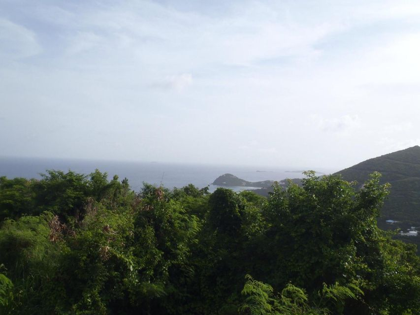 Land for Sale at Fish Bay Fish Bay St John, Virgin Islands 00830 United States Virgin Islands
