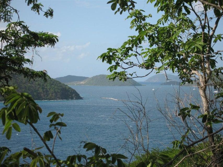Terreno por un Venta en Hansen Bay Hansen Bay St John, Virgin Islands 00830 Islas Virgenes Ee.Uu.