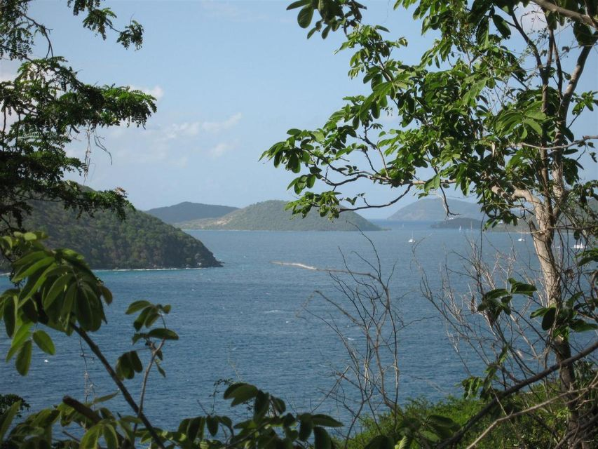 Terrain pour l Vente à Hansen Bay Hansen Bay St John, Virgin Islands 00830 Isles Vierges Américaines
