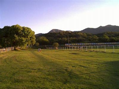 2877  Salt Mine Camp Verde, AZ 86322