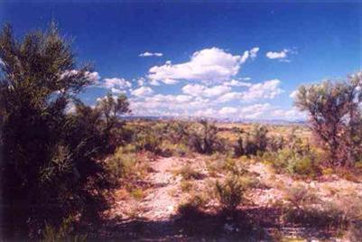 2450 S Tissaw Rd, Cornville, AZ 86325