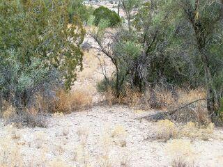4455 N Lazy Lariat Rimrock, AZ 86335