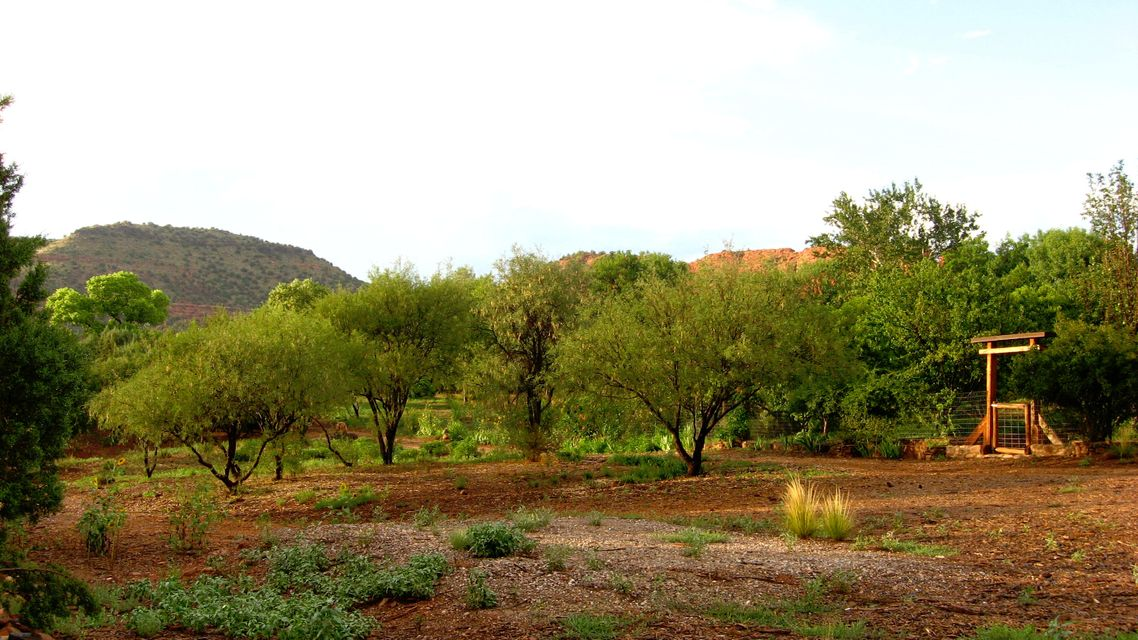 91  Loy Sedona, AZ 86336