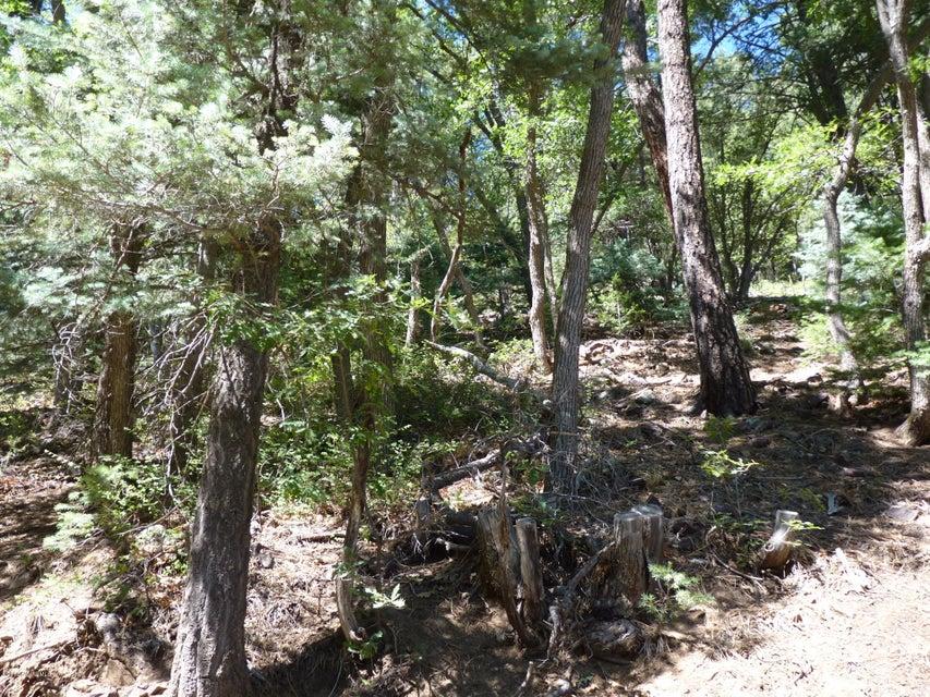 244xx-8 Walker Rd, Prescott, AZ 86303