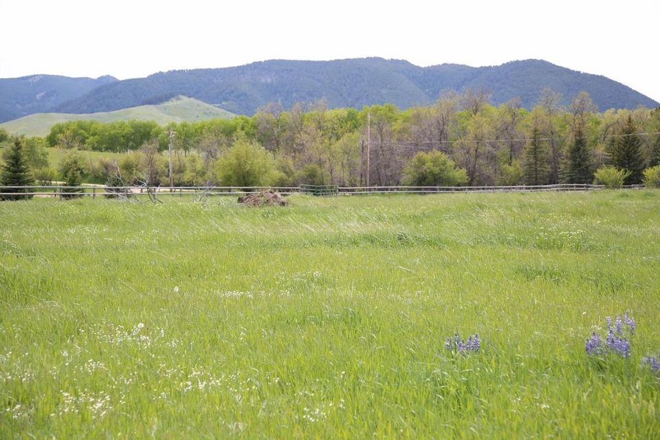TBD Fischer Drive, Story, WY 82842