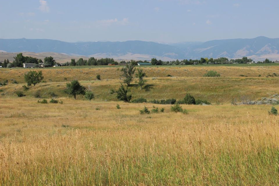 Kingfisher Avenue, Sheridan, Wyoming 82801, ,Ranch-Land,For Sale,Kingfisher,17-851
