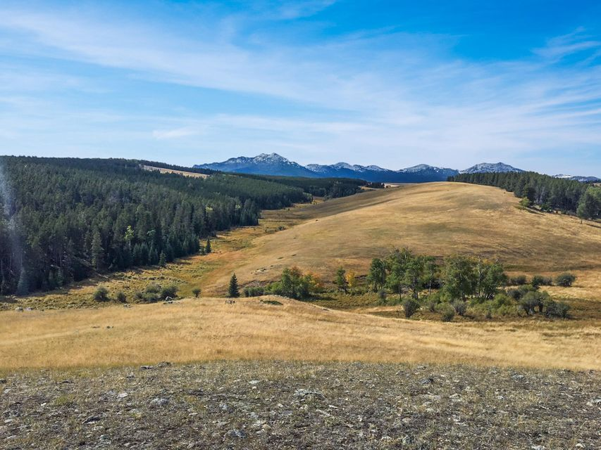 Tract 1 Poison Creek Road, Buffalo, Wyoming 82834, ,Ranch-Land,For Sale,Poison Creek,18-610