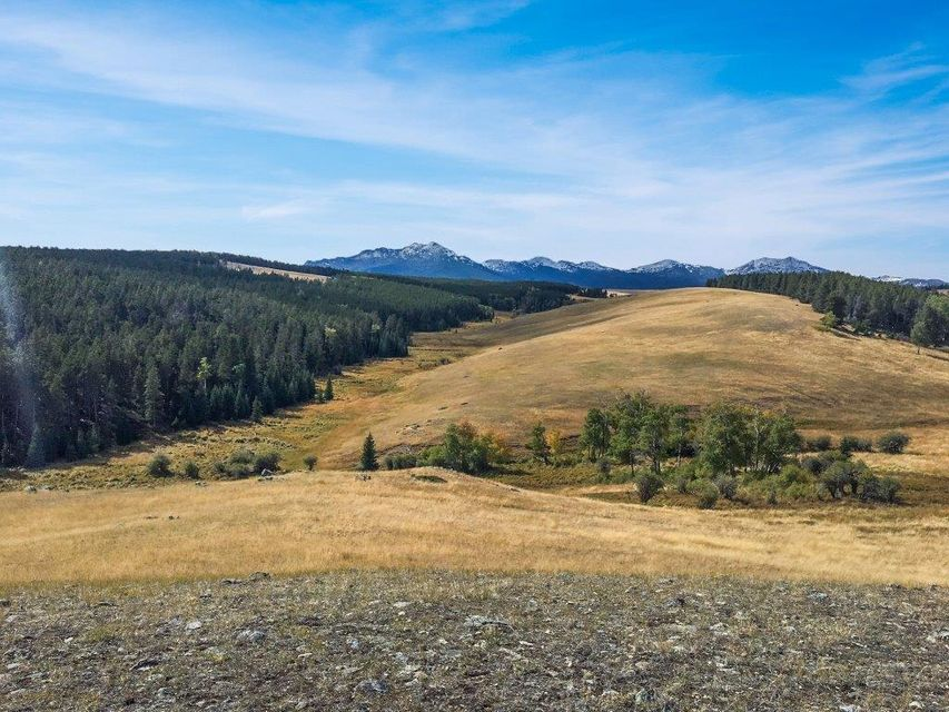 Tract 2 Poison Creek Road, Buffalo, Wyoming 82834, ,Ranch-Land,For Sale,Poison Creek,18-611