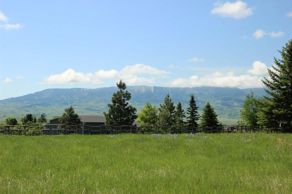 Peralta Drive,Big Horn,Wyoming 82833,Building Site,Peralta,18-724