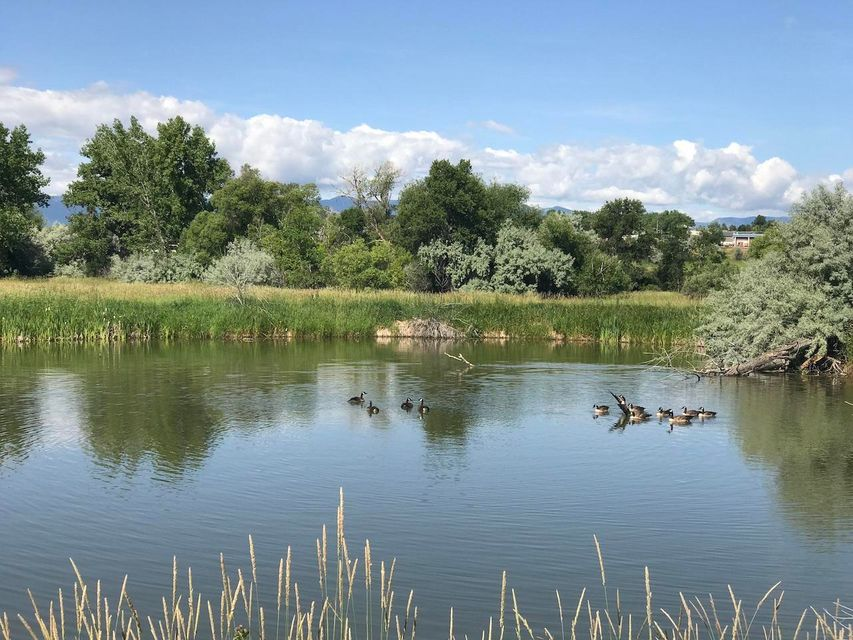 Wetlands Drive,Sheridan,Wyoming 82801,Building Site,Wetlands,18-730