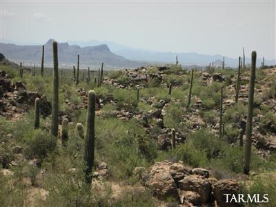 13970 N Jims Deadend Place, Marana, AZ 85742