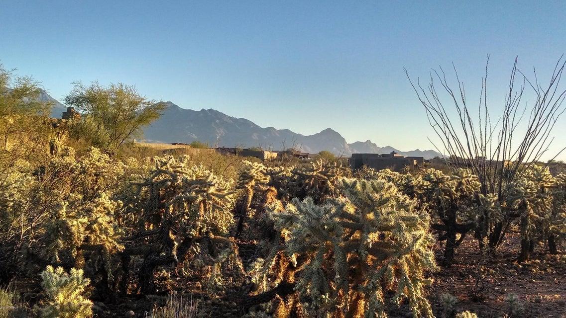 1088 E Josephine Saddle Place, Green Valley, AZ 85614